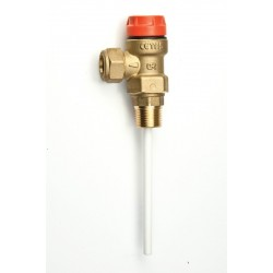 6 Bar Temperature & Pressure Relief Valve